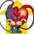 心臓の画像03